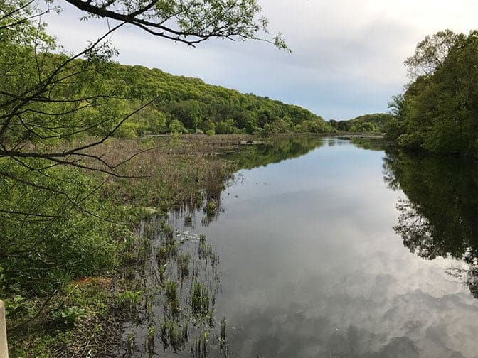 Dam removal leads to rebirth of the Paulins Kill