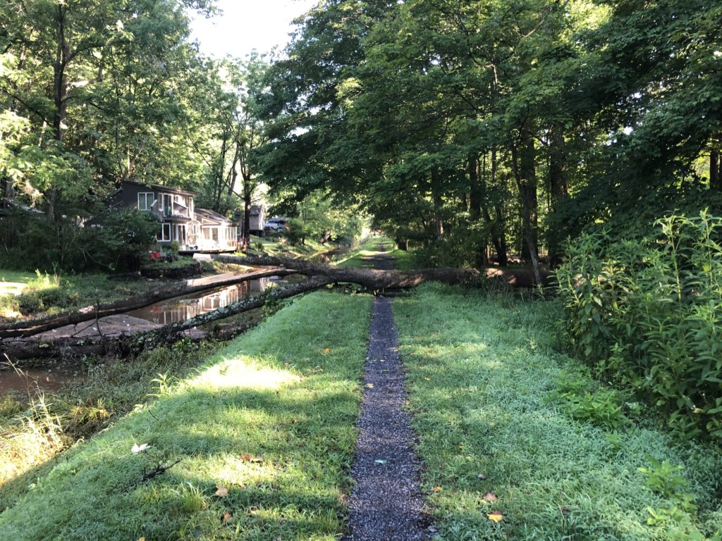 Group dowsing for money to water the Delaware Canal