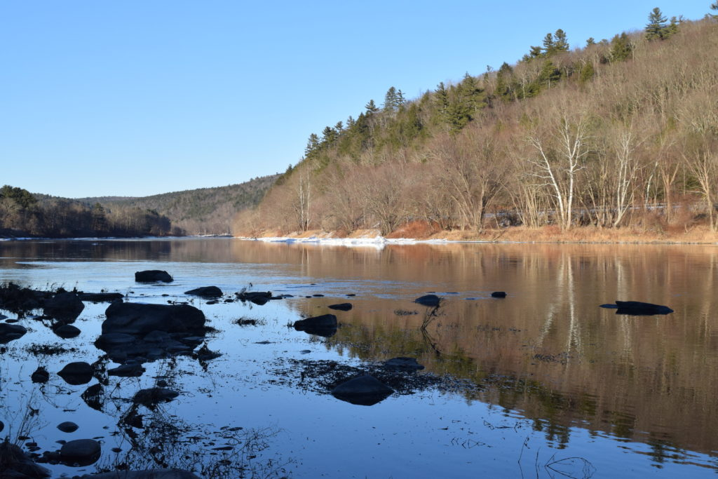 Upper Delaware River looking upstream between Pike County, Pa. and Sullivan County, N.Y. PHOTO BY REBECCA SMITH