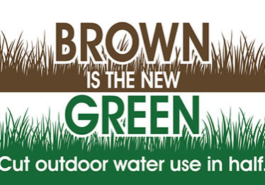 Brown-Green Drought SignFINIno-logo